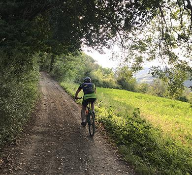 Basciano bike MTB percorsi
